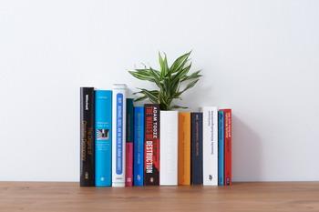 Книга -  ваза от дизайн студии «YOY»