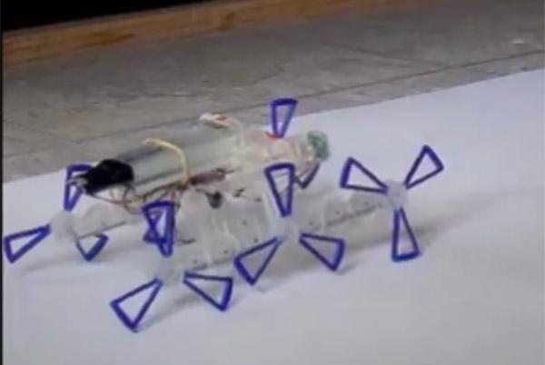 Стремительный робот «STAR.V3» проникнет в труднодоступные места (видео)