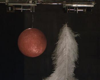 Свободное падение шара для боулинга и нескольких перьев (видео)
