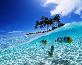 Лазурные воды, остров Бунакен, Индонезия