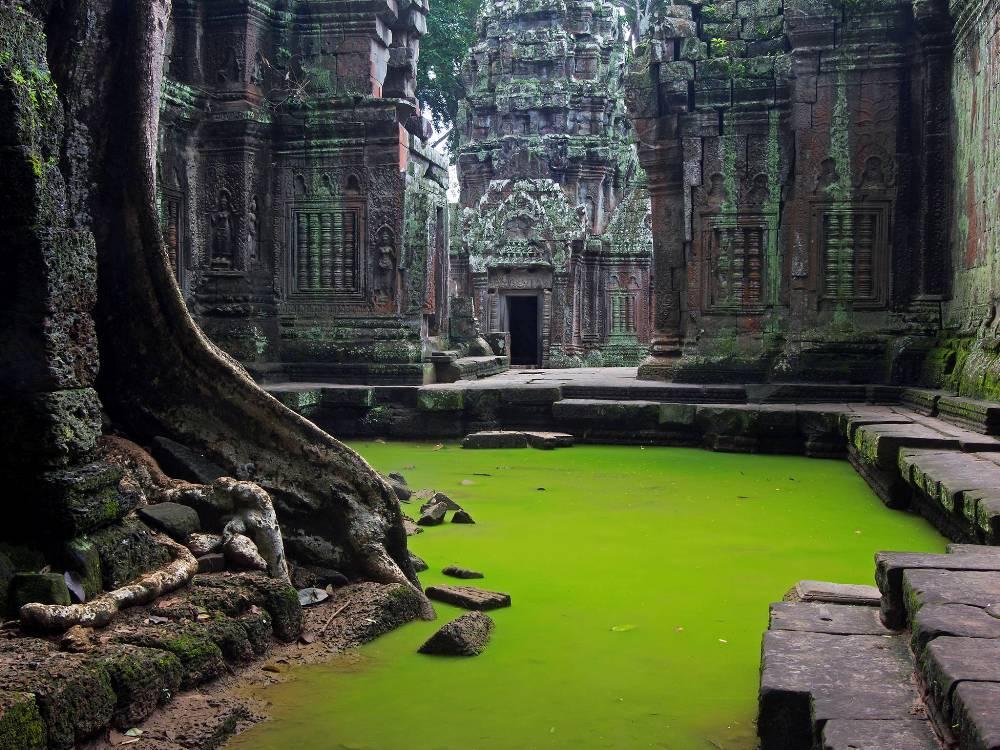 Храм Та Прум, Ангкор, Камбоджа