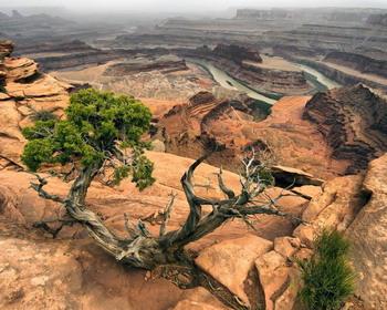 Марсианский пейзаж национального парка Каньонлендс (англ. Canyonlands National Park)