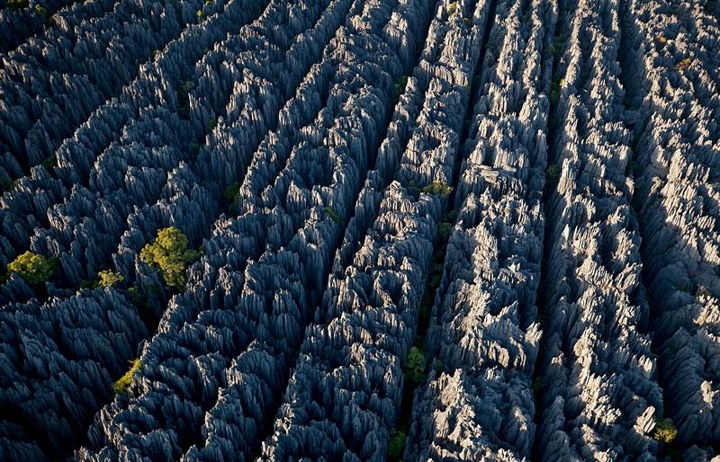 Удивительный Каменный Лес, Цинжи-дю-Бемараха, Мадагаскар