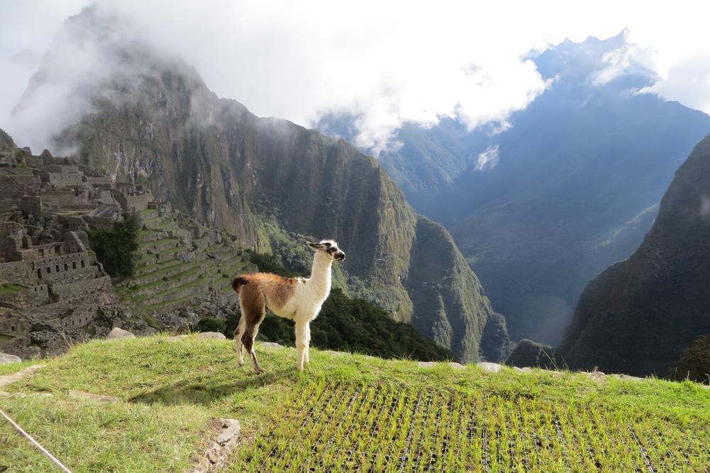 Древний город Мачу-Пикчу, Перу