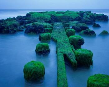 Очаровательный Изумрудный остров, округ Оушен, Нью-Джерси