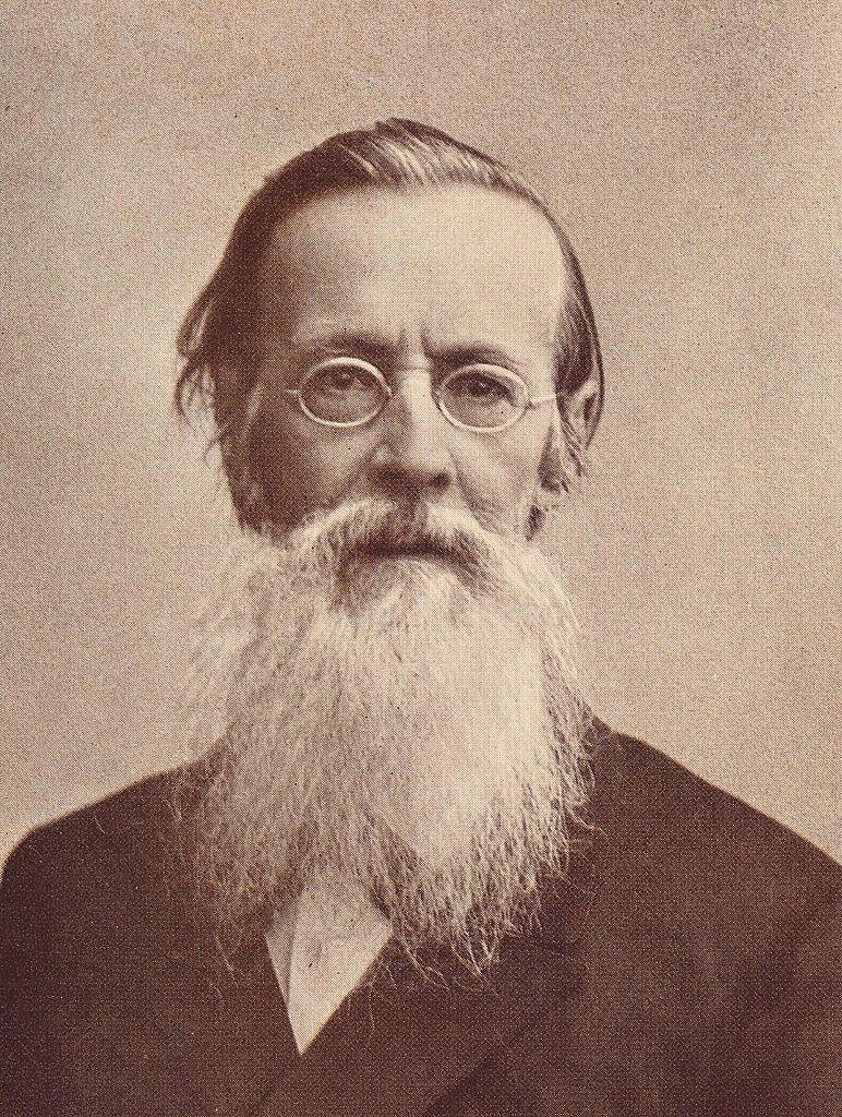 Аполлон Николаевич Майков. Фотография в поздние годы