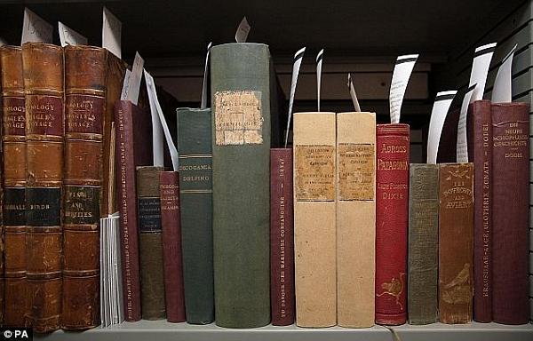Книги из библиотеки Дарвина, хранящиеся в Кембриджском университете (здесь и ниже фото PA).